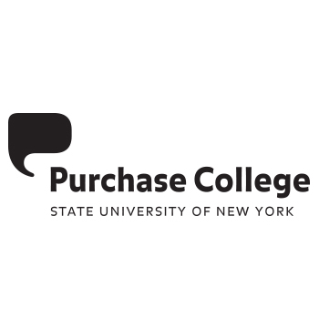 Assistant Professors of Math/Computer Science and New Media