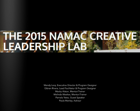 2015 NAMAC Creative Leadership Lab