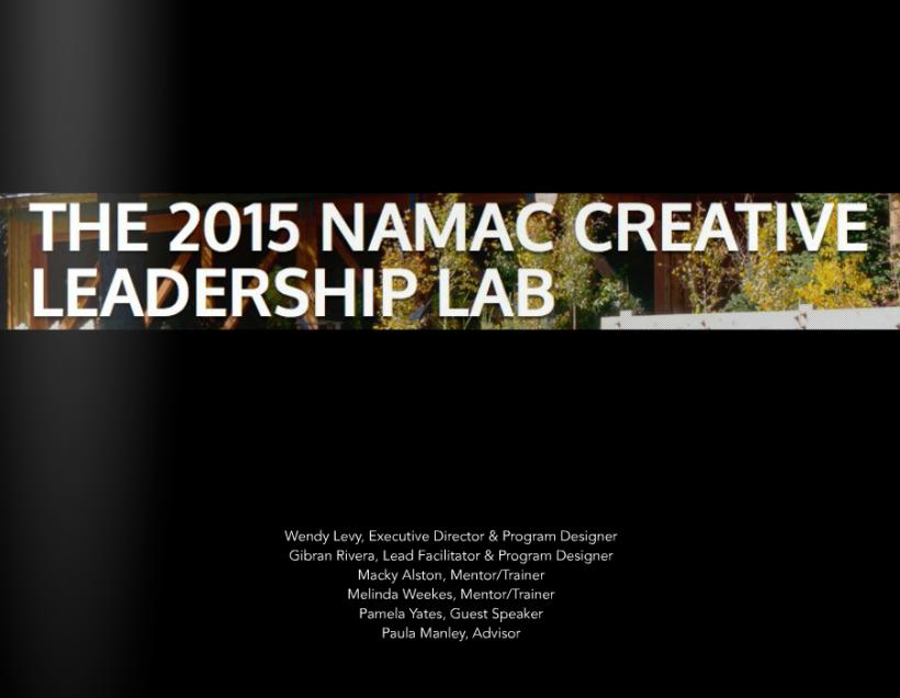 2015 NAMAC Creative Leadership Lab